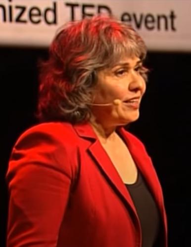 TEDxAlmere Mardjan Seighali